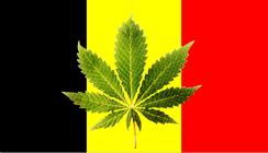 marijuana-belgium