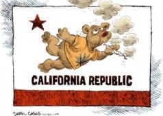 california-marijuana-nation