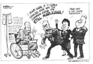medical-marijuana-cartoon-cures