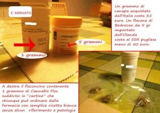costi-1-grammo-cannabis-flos-2